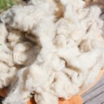 From Baaa to Bedding: How to Process Wool (Part 1)