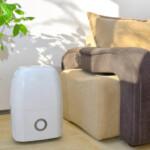 dehumidifier helps allergy symptoms