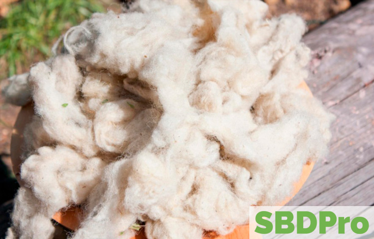 wool sustainable resource
